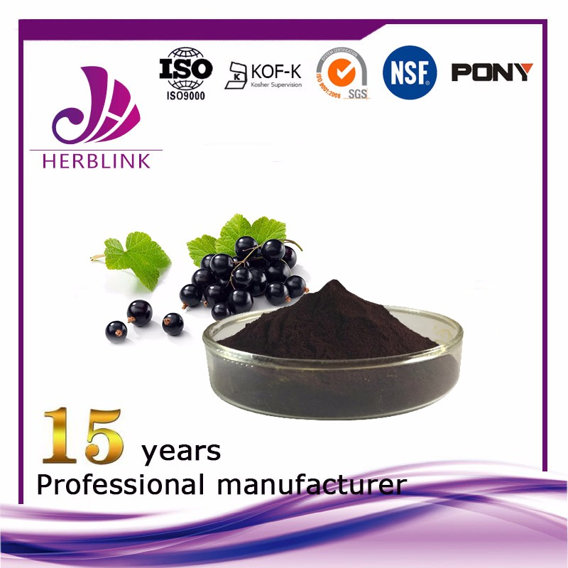 Black Currant extract Anthocyanin 25%