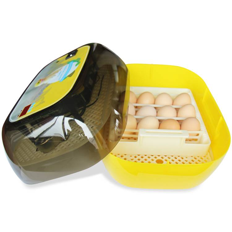 new small family automatic 12pcs chicken egg incubator for sale