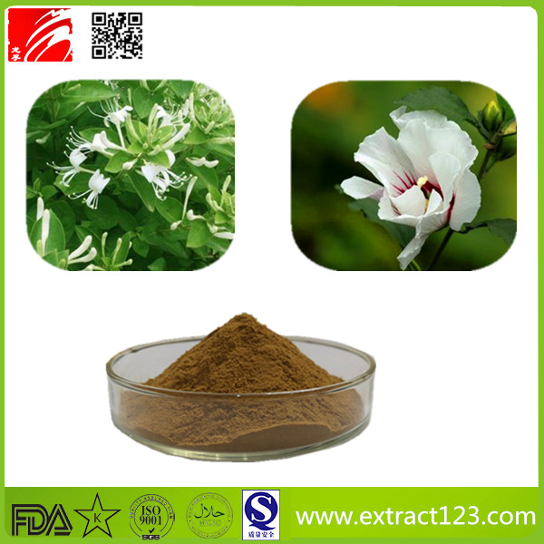 High Quality Osmanthus Extract