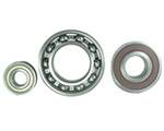 Electrical Motor and Gear Box/Speed Reducer Bearings