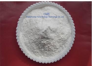 Carboxymethyl starch sodium ( CMS )