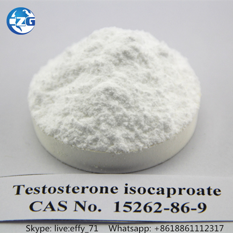 Testosterone Steroid Hormone Testosterone Isocaproate CAS No: 15262-86-9