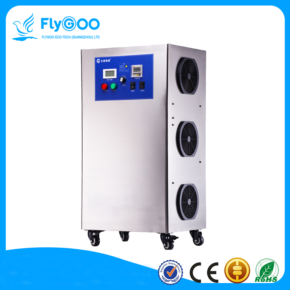 60g Ozone Generator for Cleaning Vegetables Meat