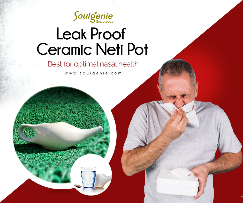 Leak proof Ceramic Neti Pot