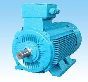ac  motor (Y2 series three-phase induction motor)
