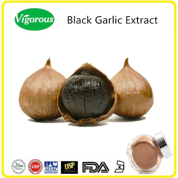 GMP Kosher Halal manufacturer Free samples High quality Black Garlic Extract