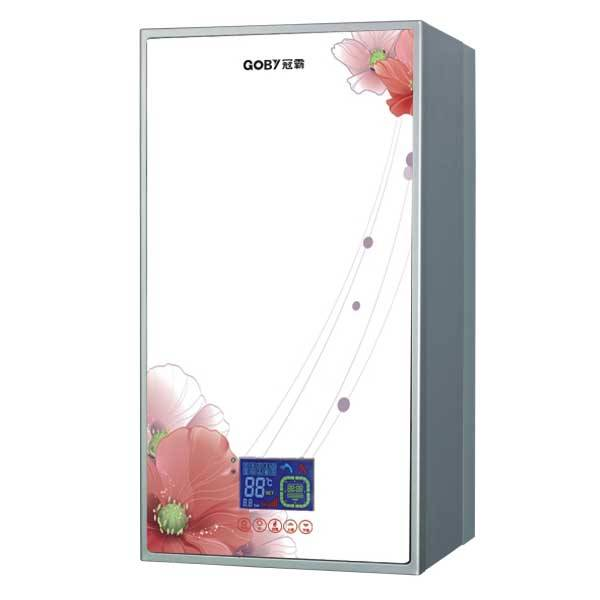 2014 New Style Wall Hung Gas Boiler for Home