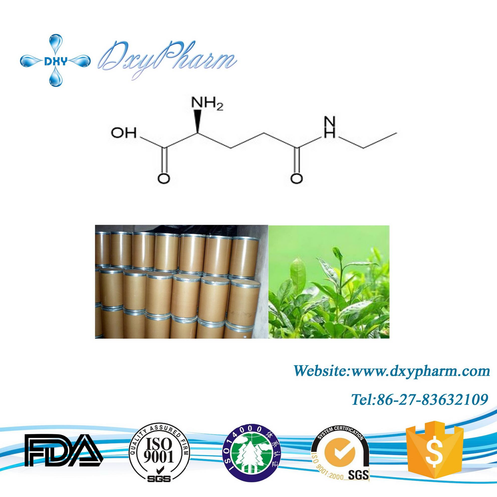 Plant Extract L-theanine CAS: 3081-61-6