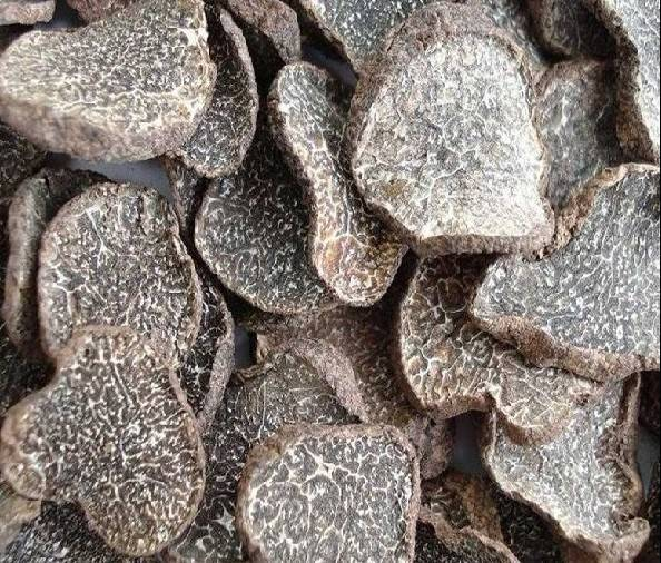 Dried black winter truffle slices, the wild truffle mushroom