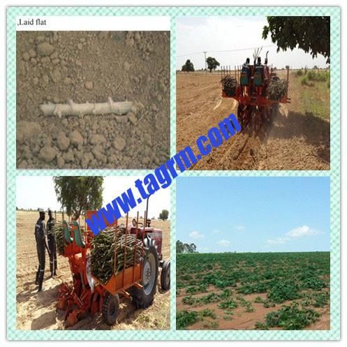 2AMSU cassava planter/cassava cultivator/cassava seeder