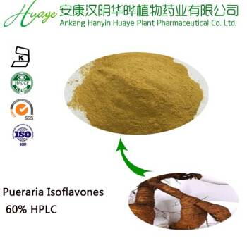 pueraria extract (flavones /isoflavones) from 15 years manufacturer experience