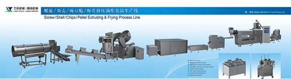 Screw/Pellet/Chips Extruding&Frying Process Line