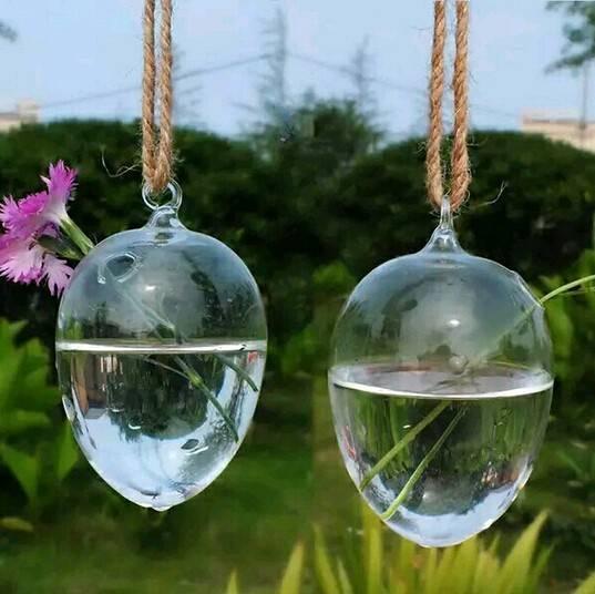 egg shape hanging glass terrarium hydroponic plant vase
