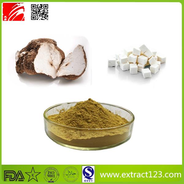 High Quality Poria Cocos Extract Powder