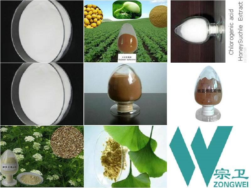 Garden Erphorbia Herb extract
