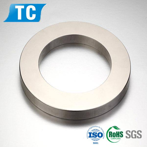Big ring magnets/big round magnets/custom cast alnico magnet