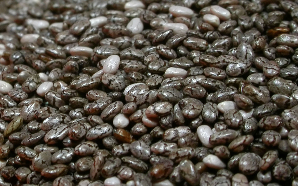 Chia Seeds Pure And Natural Chia Seeds