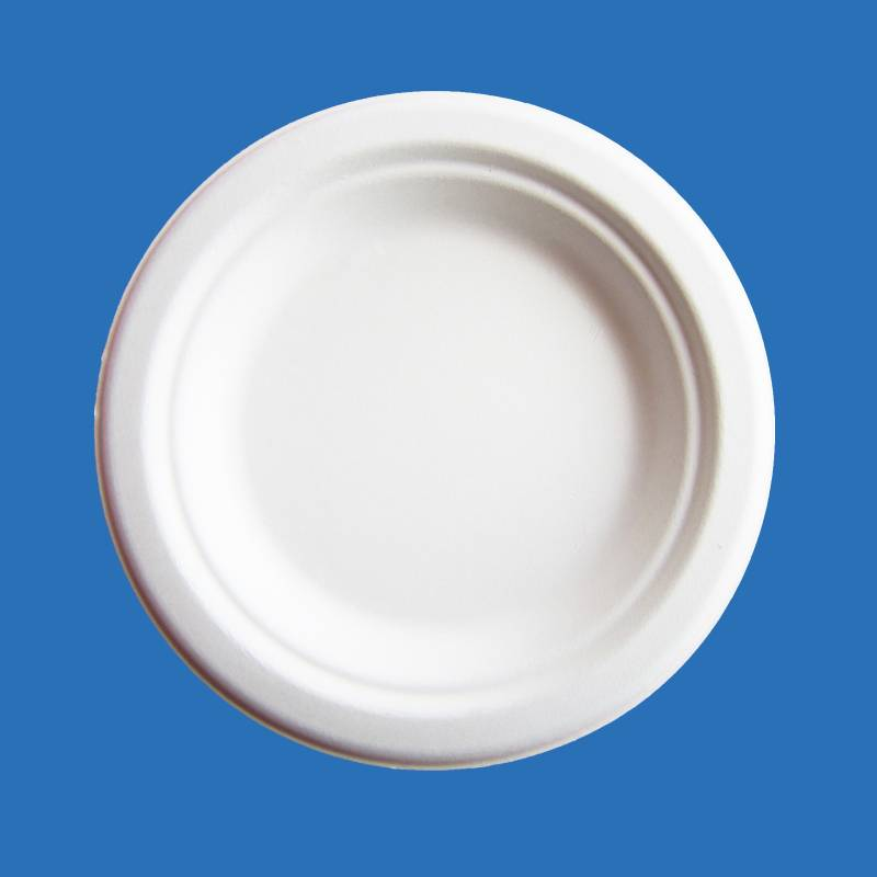 YP06 Best quality of Disposable biodegradable tableware