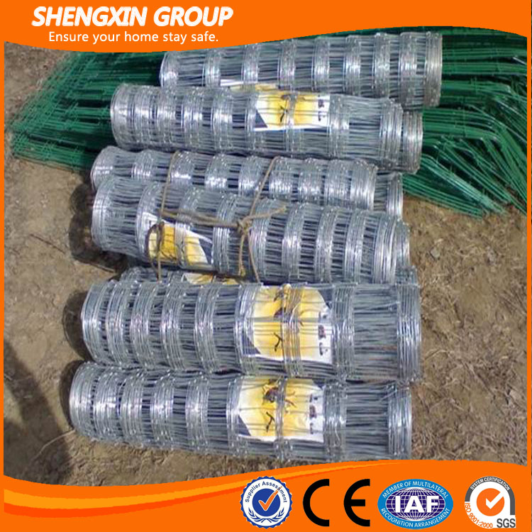 High quality Hot dipped galvanized field fence