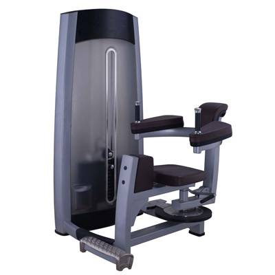 Rotary Torso gym equipment / fitness equipment