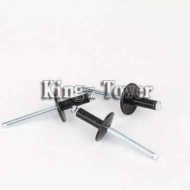 China screw manufacturer big head rivet
