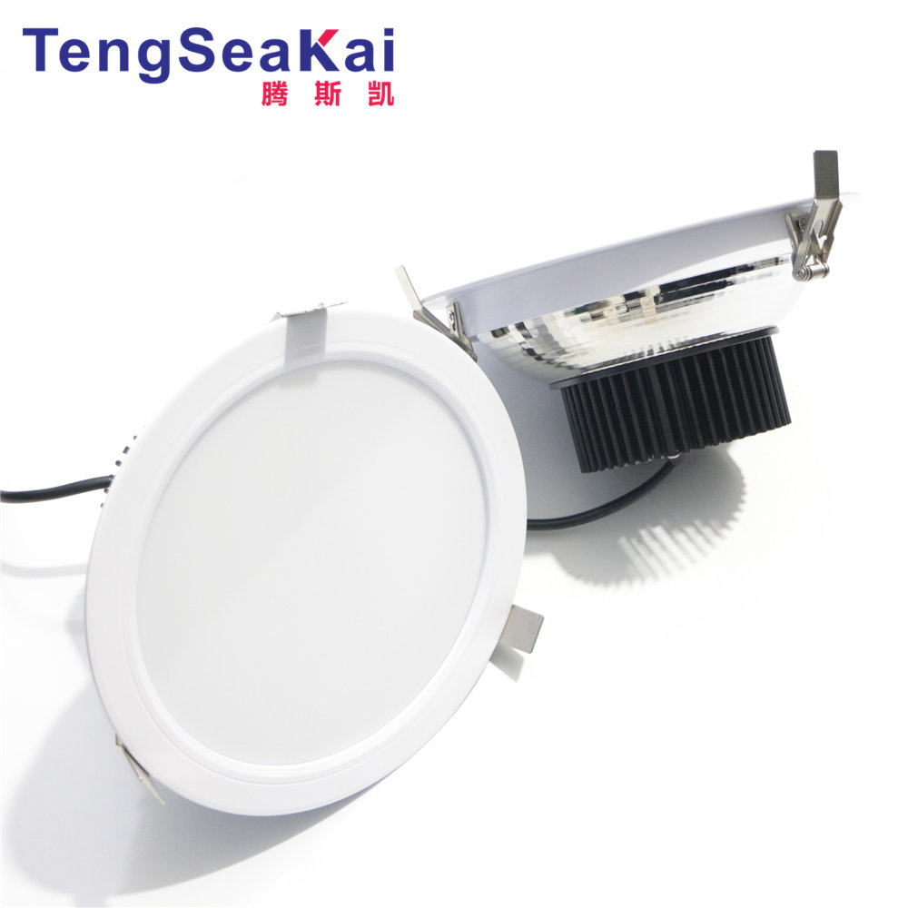 "wholesale market down light 8"" Dimmable LED Downlight Round 38W europe market popular"