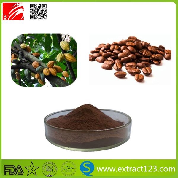 High Quality Cocoa Extract Powder