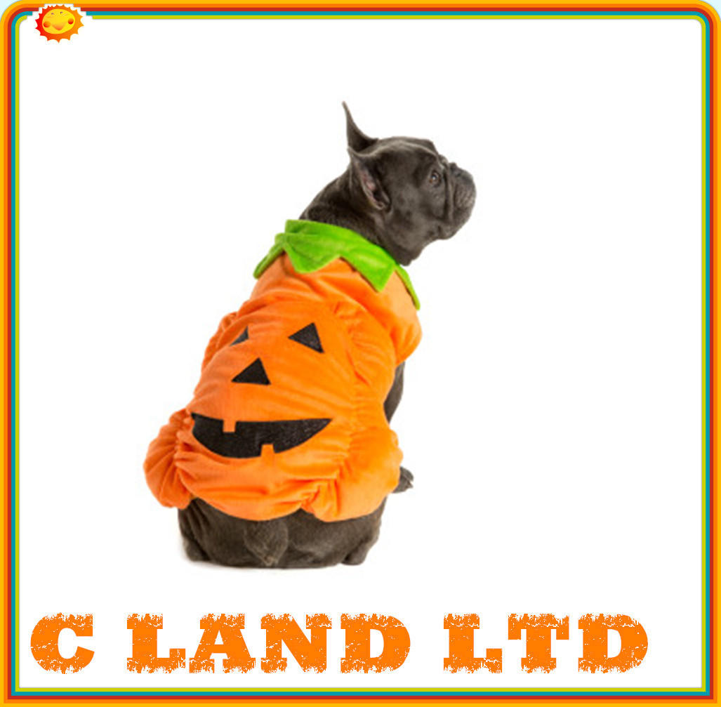 fashion custom funny fashion Pet Costume