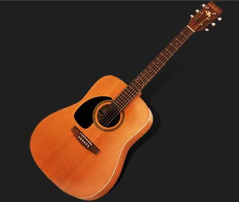 Guitar PM-125D/NT  Acoustic guitar XXT53