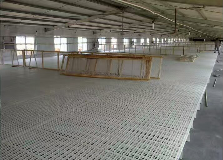 chicken farming plastic slat floor