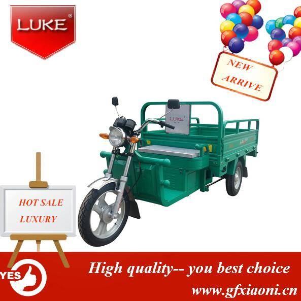 New Arrived Electric Cargo Rickshaw
