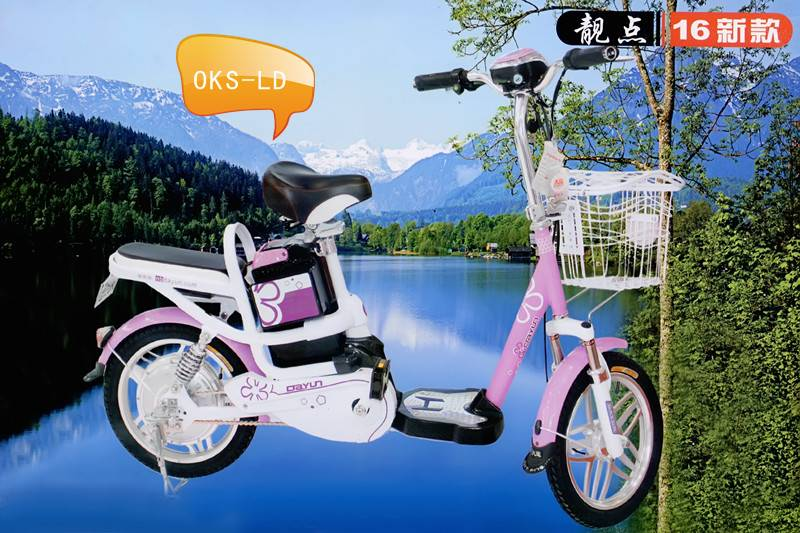 Electric Bicycle (OKS-LD)