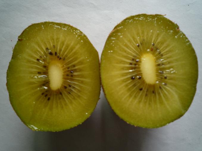 Chinese golden kiwi