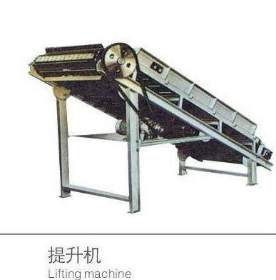 Fruit&Vegetable Lifting Machine