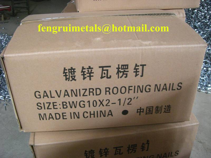 10GX2.5inch galvanized umbrella roofing nails