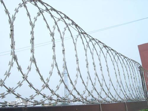 Blade barbed wire