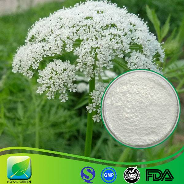 100% Natural Chinese Sexual Improvement Medicine Cnidium Extract Osthole Cas No.: 484-12-8
