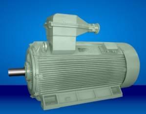 IEC standard electric motor
