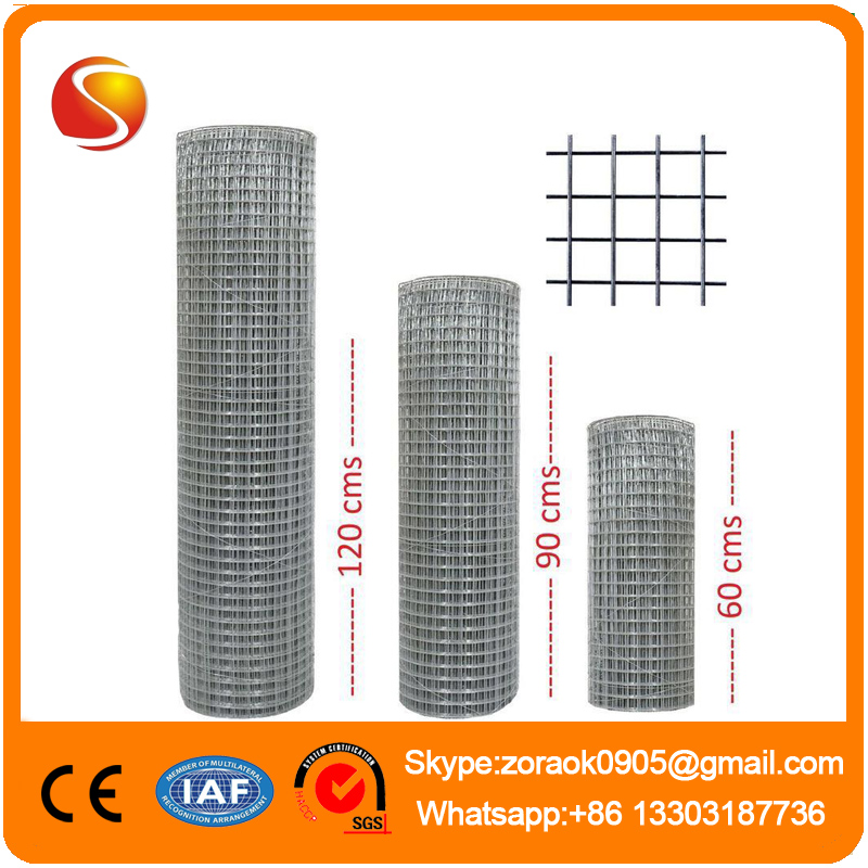 welded wire mesh /hot-dipped galvanized welded mesh