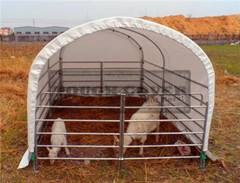 3m(10') wide Livestock Barns,Housing, Cattle Barns