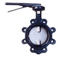Two stem without pin Butterfly Valve