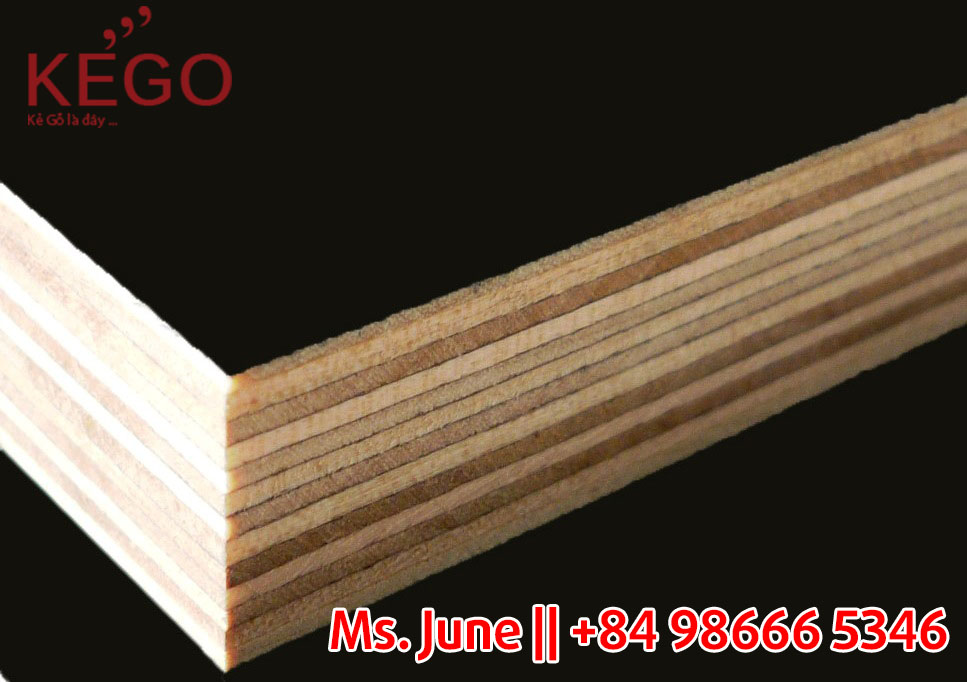 Hot selling Film Face Plywood with great price