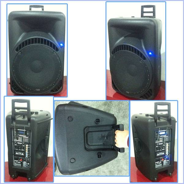 Active Type 15inch Pa Systems Trolley Speaker with Reachargeble Battery