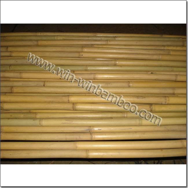 Tsinglee tonkin bamboo canes for garden or farming supports