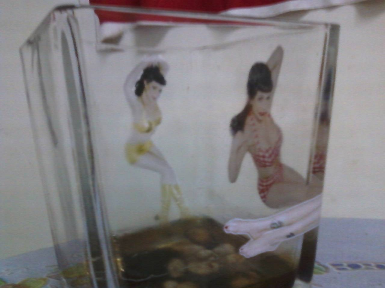Water-slide Decals Transfer Paper Printing/ Glass Double way view