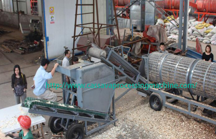 Cassava chips plant for exporting