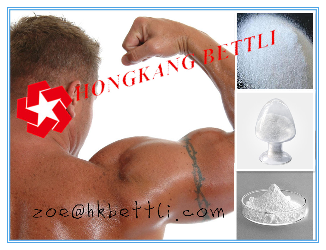 Top Quality Testosterone Undecanoate for Bodybuilding