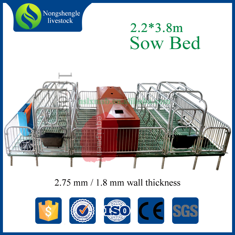 Pig farming equipments sow cages sow farrowing crate