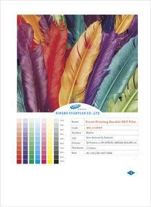 Eco-solvent Front Printing Backlit Film (MS-210PET)