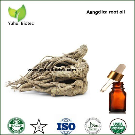 angelica sinensis , angelica sinensis extract powder, anglica sinensis extract